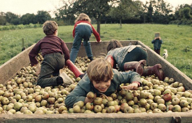 Madeleine de Sinéty - La Charette de pommes